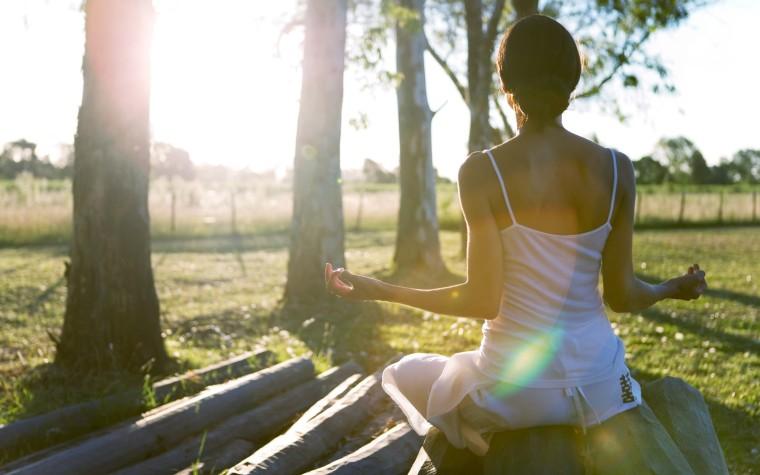 meditationfarm
